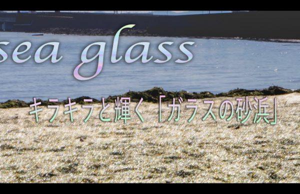 狙いインスタにあらず長崎に七色に輝く砂浜が出現